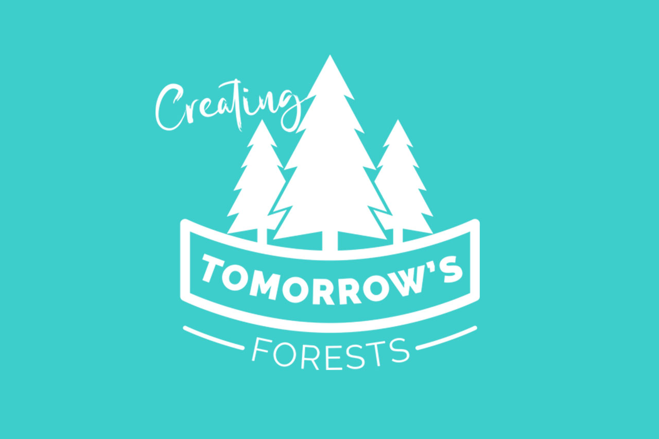 New Partnership with Tomorrow's Forests image