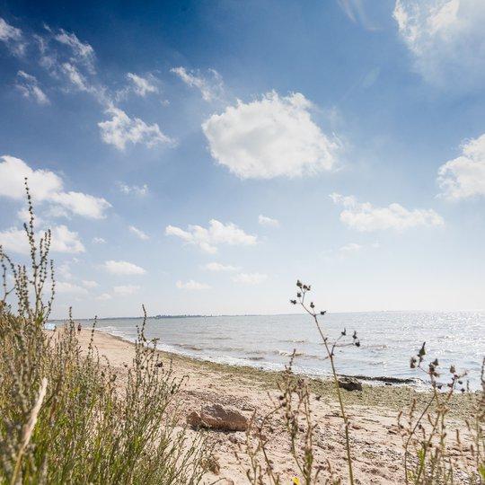 Mersea Island Beach