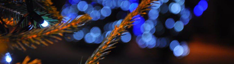 Winterfest image