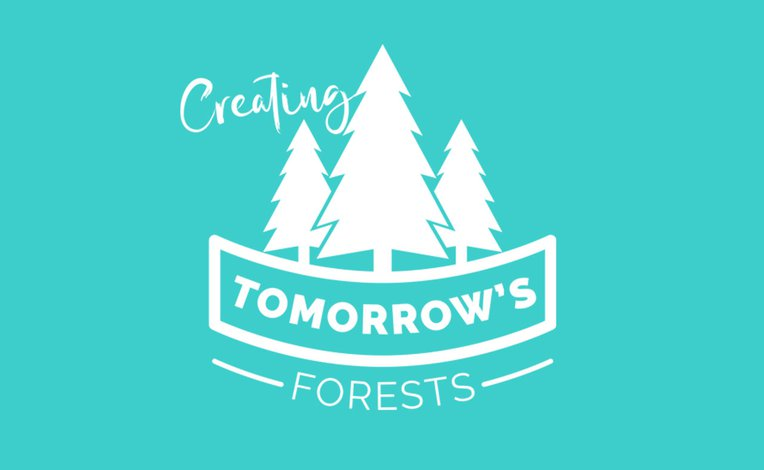Partnership with Tomorrow's Forests image