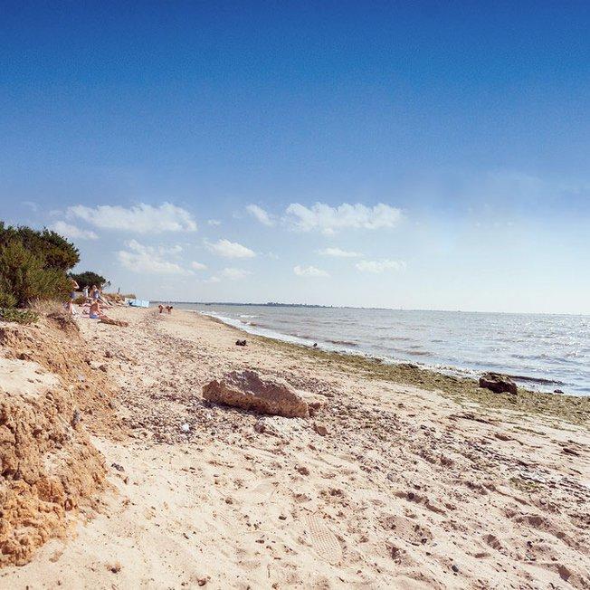 Escape to the peaceful Essex coast image